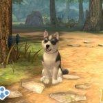 Скриншот PlayStation Vita Pets – Изображение 15