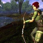 Скриншот Dungeons & Dragons Online – Изображение 75