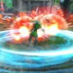 Скриншот Hyrule Warriors – Изображение 8