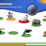 Скриншот Animal Genius