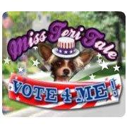 Обложка Miss Teri Tale: Vote 4 Me