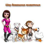 Обложка Шоу домашних животных