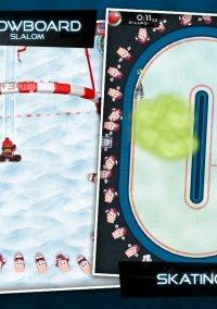 Обложка Flick Champions Winter Sports