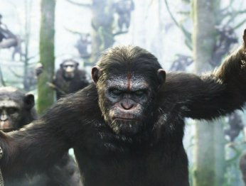 Вышел первый трейлер «Войны планеты обезьян»
