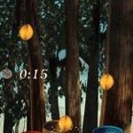 Скриншот Disney Fairies: Tinker Bell and the Lost Treasure – Изображение 7