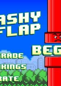 Обложка Smashy Flap