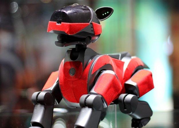 Sony создаст робота, с которым можно будет подружиться - Изображение 1