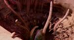 Галерея: самые причудливые ипугающие существа извселенной «Звездных войн». - Изображение 6