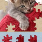 Скриншот Adorable Kitten Jigsaw Puzzle – Изображение 2