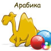 Арабика – фото обложки игры