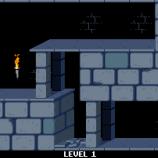 Скриншот Prince of Persia – Изображение 2
