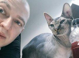 Котов кормят встиле русских рэперов. Это главный TikTok прямо сейчас