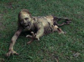 Сериал «The Walking Dead» стал онлайн курсом в университете