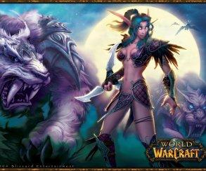 Blizzard закрыла доступ в свои игры для иранских игроков
