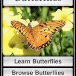 Скриншот Butterflies! – Изображение 5